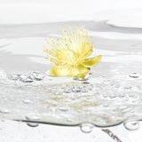 Aqua gelb 1